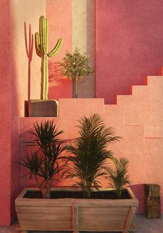 Red wall Tribute on Behance Color Schemes Design, Blender 3d, Red Walls, Behance, Architecture, Plants, Arquitetura, Plant, Planting
