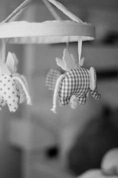 Decoración y fiestas para niños | Escarabajos, bichos y Mariposas