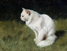"""Arthur Heyer (German/Hungarian, 1872-1931) White Cat in the Tall Grass Oil on canvas 22.5x26.5cm private collection    White Cat in the Tall Grass    Oil on canvas, signed lower left.    Painting Size: 16"""" x 20"""""""
