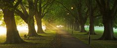 Jesus Green, Cambridge by SharpeImages.co.uk, via Flickr