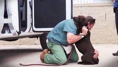 Hunden Ester blev misshandlad som valp, och det märks tydligt. Men fängelsekunden Jason hjälpte till att rehabilitera henne. Han ...