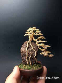 Root-over-rock wire bonsai tree by Ken To by KenToArt on DeviantArt