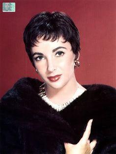 Elizabeth Taylor's short hair 1950's