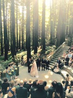 Photo of UC Botanical Garden at Berkeley - Berkeley, CA, United States. Our wedding in the redwoods.
