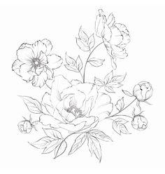 daisy, flower, and peony image