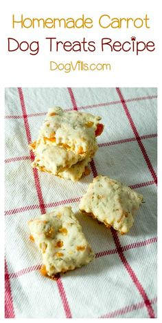 Looking for an easy veggie recipe to make for Fido? Check out these yummy homemade carrot dog treats & bake up a batch today!