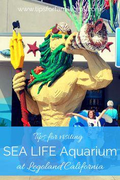 Tips for visiting SEA LIFE Aquarium at LEGOLAND California. It's included in many park hopper and BOGO tickets! | tipsforfamilytrips.com | Carlsbad | San Diego | spring break | summer vacation | family vacation
