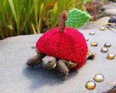 """Résultat de recherche d'images pour """"tortue tricot"""""""