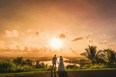 Find a wide range of Wedding photographers in Cairns. Browse through bios and pictures of the book perfect Cairns Wedding Photographers at Allgigs.