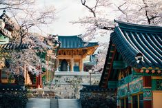 Hwaeomsa Temple in South Korea, The temple is widely regarded as one of the most beautiful temples in all of Korea. Our experience there was strange and wonderful.