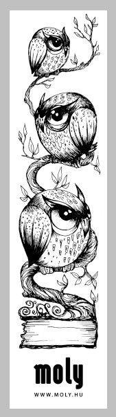 Corujas / Owl - Rosana Raven ◯☾☆~