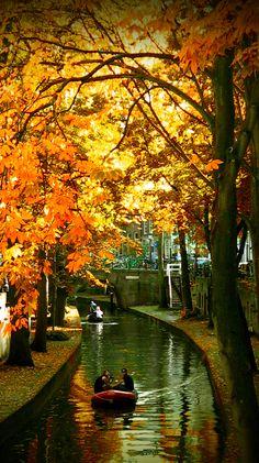 Autumn in Utrecht, Netherlands • photo: Jeroen van Wijngaarden on Flickr  Nieuwegracht