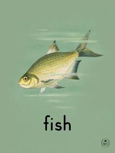 Fish Art Print by Ladybird Books