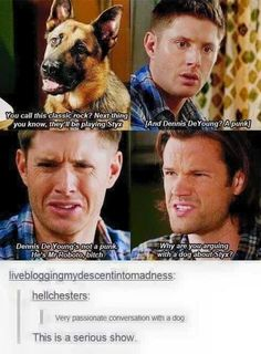 Post with 1870 votes and 110566 views. Tagged with funny, gifs, supernatural; Shared by Supernatural humour Supernatural Series, Supernatural Quotes, Supernatural Fandom, Sherlock Quotes, Sherlock John, Sherlock Holmes, Spn Memes, Supernatural Bloopers, Supernatural Tattoo