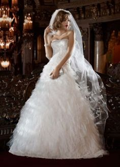 David's Bridal Wedding Dress: Beaded Lace Gown with Feathery Tulle Skirt Style
