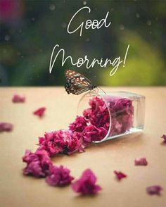 Good Morning Monday Images, Good Morning Gift, Good Morning Greeting Cards, Good Morning Friends Images, Good Morning Beautiful Pictures, Good Morning Images Flowers, Good Morning Image Quotes, Good Morning Picture, Good Morning Greetings