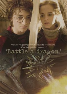 Harry and Hermione ~ Harry Potter and the Goblet of Fire Harry Potter Goblet, Always Harry Potter, Mundo Harry Potter, Harry Potter Feels, Harry James Potter, Harry Potter Jokes, Harry Potter Pictures, Harry Potter Aesthetic, Harry Potter Universal