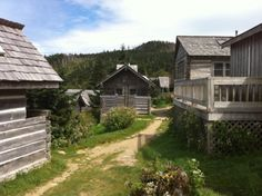 Mt. LeConte Lodge-  Dad, Devon and I hiked up and spent the night spring 07, one of my most precious memories.