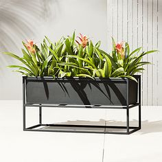 Industrial planter gives rise to greens in matte carbon powdercoat. Nested within sculptural iron frame, galvanized steel boxes remove for easy planting and watering. Arrange together to create a hi/lo effect, indoors or out. Indoor Planter Box, Balcony Planters, Metal Planter Boxes, Window Planters, Modern Planters, Outdoor Planters, Flower Planters, Diy Planters, Flower Pots