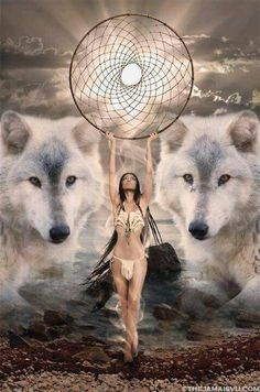 Save Gray Wolf, buy quality products and provide wolf sanctuary! - 💃🏻Wolves and Women Pictures?🐺 to explore awesome wolves design - Native American Wolf, Native American Wisdom, Native American Pictures, Native American Artwork, Indian Pictures, Wolf Pictures, American Indian Art, American Indians, Indian Wolf