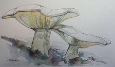 mushroom couple by Jennifer Kraska, via Flickr