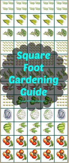 Square Food Gardening Guide Printable !