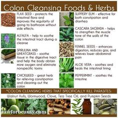 Colon Cleansing Foods & Herbs by rawforbeauty.com