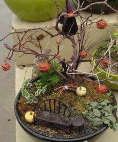 Halloween Fairy Garden: via: the garden junkie