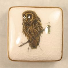 ButtonArtMuseum.com - a Beautiful Porcelain (not earthenware) Autentic Satsuma Button.  It is a large square button and measures approx. 2 inches. This button is has a very pretty wide eyed owl with A LOT of beautiful detailed hand painted gold gilding.  He looks like he can fly right off the button. The button has a hand painted Double border.On the back, the top of the shank does not have glaze as is a trademark feature of Satsuma buttons