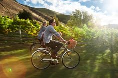 New pin...New Zealand Wine Country Bike Ride! #NZ #travel #wondrous #wine #regions