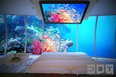 """""""Dubai-based construction company Drydocks World and Swiss firm BIG InvestConsult will create the Water Discus Hotel, a luxury underwater hotel in Dubai. It will have 21 suites that are 10 meters below the surface and, with the hotel's ability to rotate, guests will enjoy incredible views of the ocean down below."""""""