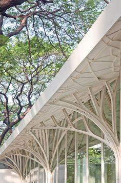 love this organic architecture