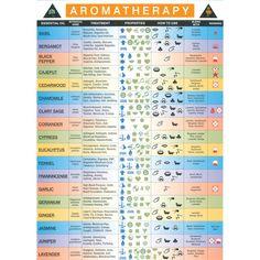 Laminated Aromatherapy Wall Chart
