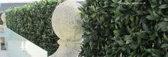 Close up of the Artificial Hedge/Screen made with Bay Foliage