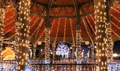 Festa Luce: European Christmas Light Festival in Japan Opening Soon Wakayama, Day And Time, Night Time, Marina City, Lighting Concepts, Can Lights, Japan, Christmas Lights, Attraction