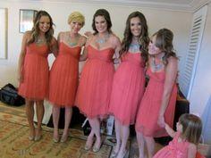 coral Amsale bridesmaid dresses
