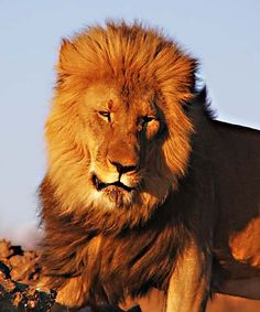 Namibia. BelAfrique your personal travel planner - www.BelAfrique.com.