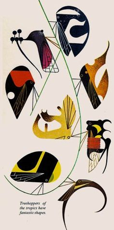 """Treehoppers of the tropics have fantastic shapes"" by Charley Harper from The Animal Kingdom, 1968"