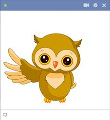 Owl for Facebook:   http://1.bp.blogspot.com/-7GtzCgM3AKo/U78IRN9iHvI/AAAAAAAAKR4/3JMHCJUpIQw/s1600/awesome-owl.png Copy the emoticon.  Click on  icon on Facebook.  Paste the emoticon in the File name field and click Open.