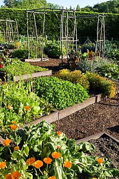 I love the idea of this raised vegetable and flower garden {French potager garden }