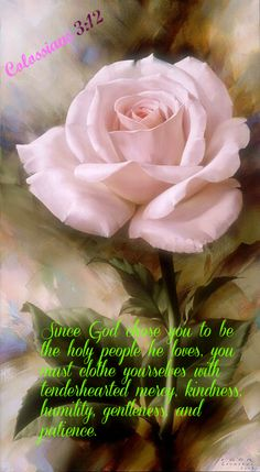 Colossians 3:12 Since God chose you to be the holy people he loves, you must clothe yourselves with tenderhearted mercy, kindness, humility, gentleness, and patience.