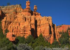 "Red Canyon: This section of the Dixie National Forest is the ""Welcoming Committee"" for Bryce Canyon National Park.  You can see interesting scenery from..."