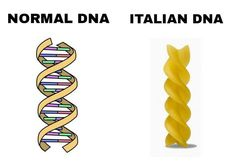 [/r/dank_meme] Normal DNA Italian DNA