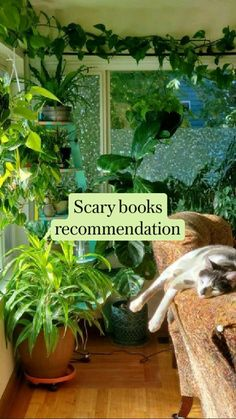Top Books To Read, Books Everyone Should Read, Good Books, Book Suggestions, Book Recommendations, Book Nerd, Book Club Books, Mythology Books, Book Page Crafts