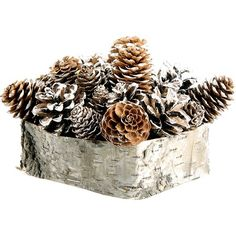 I pinned this Solennel Pinecone Arrangement I from the Rustic & Refined event at Joss and Main!