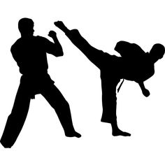 Learn from the best Taekwondo Sydney instructors! Check out Dos Taekwondo to know more about the best taekwondo school today! Martial Arts Styles, Karate Girl, School Today, Taekwondo, Fun Learning, Vinyl Decals, Banners, Ford, Silhouette