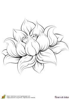 Coloriage fleur de lotus realiste sur Hugolescargot.com - Hugolescargot.com