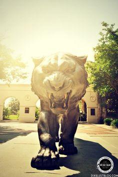 LSU Campus Visit June 2013 » Dixie Lust   [LSU Tigers, SEC Campus, Baton Rouge, Louisiana]