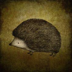 The Hedgehog -  Majalin