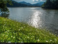 1000 images about lake junaluska nc on pinterest lakes for Lake junaluska fishing